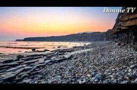 Divine Design – A Personal Note