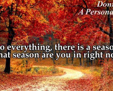 Always in a Season